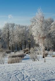 Синоптик Вильфанд заявил, что декабрь в Москве будет солнечным
