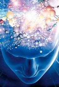 Наши способности безграничны? Некоторые учёные утверждают, что человеческий мозг способен воспринимать мир в 11 измерениях