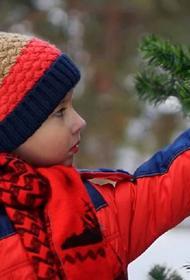 Власти Тамбовской области разрешили проведение новогодних утренников в детсадах
