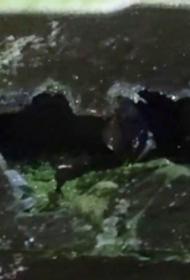 В Щелково мужчина на парковке около торгового центра разбил стекла 12 автомобилей