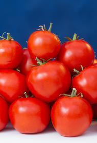 Почему Россельхознадзор запретил ввоз в Россию томатов и яблок из Азербайджана