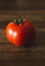 РИА Новости: Баку  ведет переговоры с Москвой о поставках томатов