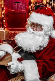 Кругом враги. «Ограничить пропаганду Санта-Клауса в России» требует от Путина томский маркетолог
