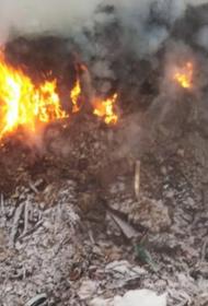 Две недели понадобилось на тушение свалки в Хабаровском крае