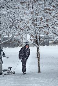 Синоптик Леус предупредил о снеге в Москве в воскресенье