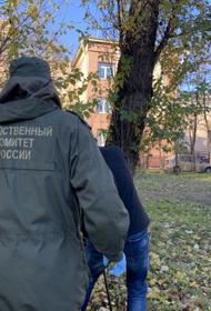 СКР: Дело возбуждено после гибели под Петербургом фигуранта
