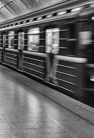 Человек упал на пути «зеленой ветки» московского метро