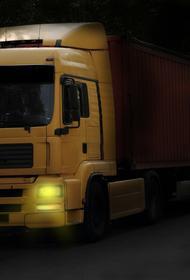 В Приморье у двух пропускных пунктов на границе с Китаем скопилось более 260 грузовиков
