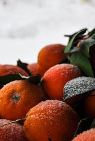 В Роспотребнадзоре перечислили правила выбора спелых мандаринов