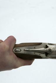Общественность предложила расширить список документов для оформления лицензии на оружие