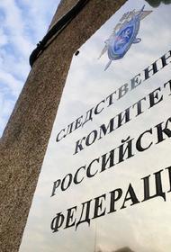 Следком установит причины гибели пенсионерки возле одной из школ в Ростове-на-Дону