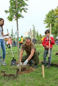 Депутат МГД Киселева: Более 3 тыс. семей весной посадят дерево в честь рождения ребёнка