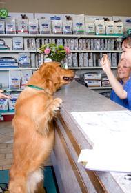 70% ветеринарных клиник России находятся под угрозой закрытия