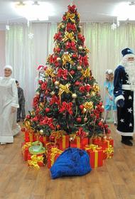 Депутат МГД Перфилова рассказала, как будут праздновать Новый год в московских школах