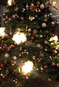 Через несколько часов западные христиане встретят Рождество Христово