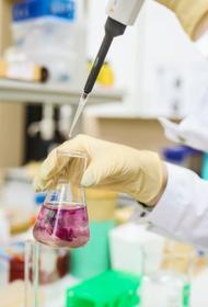 Эпидемиолог Горелов оценил опасность нового штамма коронавируса для России