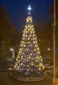 Власти Кубани приняли решение относительно 31 декабря