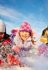 В Минпросвещения рекомендовали освободить школьников от домашних заданий во время новогодних каникул