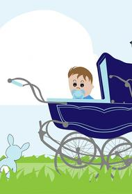 Невестку Валерии раскритиковали поклонники из-за покупки детской коляски за 130 тысяч рублей