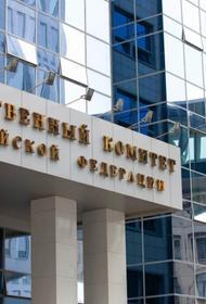 СКР возбудил в отношении Навального дело о мошенничестве, подозревая в растрате 356 млн рублей на личные цели