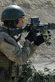 Федерация армейской тактической стрельбы в России подвела итоги 2020 года