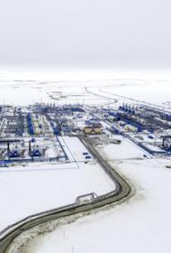 Норвежская компания отказалась сертифицировать «Северный поток-2» из-за США