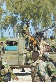 В Центральноафриканской республике оппозиция теснит правительственные силы, поддерживаемые Москвой