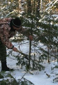 В Хабаровском крае идут операции «Елочка» и «Лес»