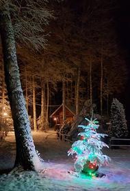 Рождество: счастье пусть придет в ваш дом, чтоб навек остаться в нем