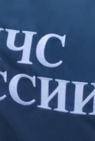 В Ленинградской области упал легкомоторный самолет, трое погибших