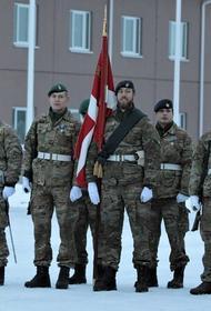 Датский воинский контингент в Эстонии научился использовать БМП на местном ландшафте и не только
