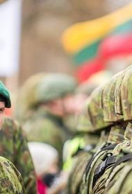 ВС Литвы возведут три новых военных городка для своих войск и союзников по НАТО