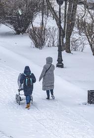 Cиноптики прогнозируют, что морозы около минус 20 градусов в Москве простоят всю следующую неделю