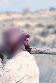 Синайские исламисты наладили кустарное производство гранатометов
