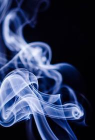 Глава организации «Гражданская безопасность» Сергей Гринин оценил новые требования к сигаретам