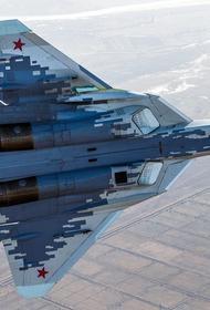 Портал Sina: российскому истребителю Су-57 далеко до передового мирового уровня