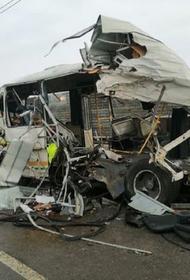 Что известно о водителе самосвала, въехавшего в колонну военных автобусов в Подмосковье
