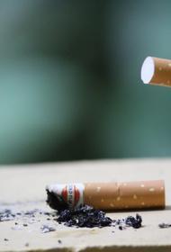 Депутат  Говорин оценил требование о «самозатухающих сигаретах»