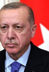 Эрдоган заявил, что Турция осталась один на один с терроризмом