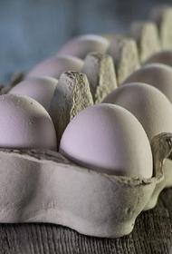 Рост цен на яйца в Минсельхозе РФ объяснили сезонным фактором