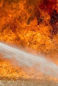 В квартире, где находился очаг пожара в Екатеринбурге, проживала неблагополучная семья