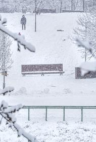 Синоптики Гидрометцентра России предупредили о снегопаде и метели в Москве, которые начнутся в ночь на 14 января