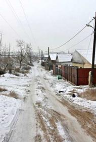 Свора собак растерзала 20-летнюю девушку в Улан-Удэ перед Новым годом