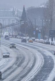 Синоптик Тишковец заявил, что «русская зима» продлится в Москве до конца января