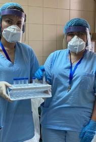 Иммунолог Жемчугов назвал группы россиян, которых нужно обязательно вакцинировать от коронавируса
