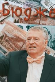 ЛДПР на 85% содержится за счет налогов россиян