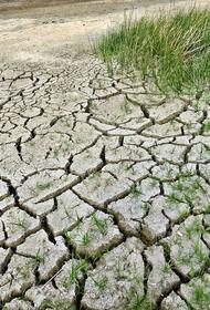 ООН: десятилетие с 2011 по 2020 год стало самым теплым в истории наблюдений