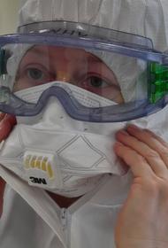 В России выявили 24 763 новых случая COVID-19, 570 - умерли