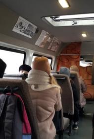 Мигрант-водитель маршрутки забрал шапку  у девочки, которая не смогла заплатить