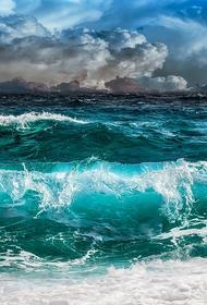 В Росморречфлоте уточнили информацию о затонувшем судне. Владелец сухогруза - украинская компания